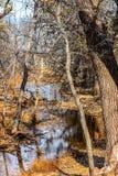 Parque de naturaleza de Martin en la caída Fotos de archivo libres de regalías