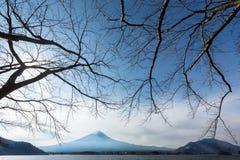 Parque de Oishi foto de archivo libre de regalías