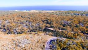 Parque de Otway Nationa del cabo, Australia Silueta del hombre de negocios Cowering Foto de archivo libre de regalías