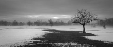 Parque de Overpeck fotografía de archivo