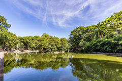 Parque de Passeio Publico Curitiba, estado de Paraná - el Brasil Foto de archivo