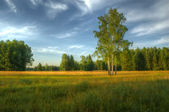 Parque de Pavlovsk, St Petersburg, Rússia Fotos de Stock Royalty Free