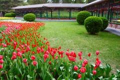 Parque de Pekín ZhongShan Imágenes de archivo libres de regalías