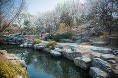 Parque de Pekín ZhongShan fotos de archivo libres de regalías