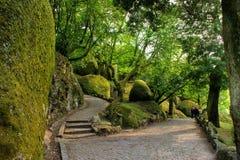 Parque de Penha en Guimaraes Imágenes de archivo libres de regalías