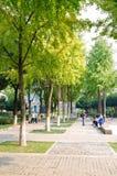 Parque de piedra de la ciudad Imagen de archivo libre de regalías