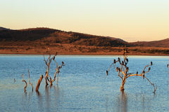 Parque de Pilanesberg imagens de stock royalty free