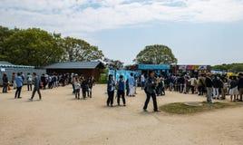 Parque de playa de Hitachi Fotos de archivo libres de regalías