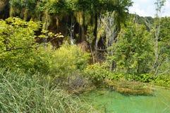 Parque de Plitvice Foto de archivo