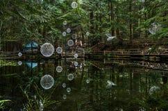 Parque de puente colgante de Capilano, Vancouver, Canadá Imágenes de archivo libres de regalías