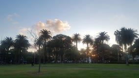 Parque de Redfern imagens de stock royalty free