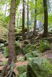 Parque de Sajonia en Alemania Fotografía de archivo