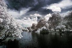 Parque de San Jaime en Londres, Reino Unido Imagenes de archivo