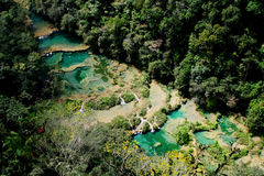 Parque de Semuc Champey na Guatemala imagens de stock