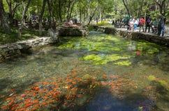 Parque de Shuimogou Imágenes de archivo libres de regalías