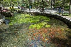 Parque de Shuimogou Fotografia de Stock Royalty Free