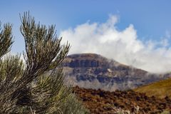 Parque de Teide Nacional Montañas de Tenerife Fotos de archivo