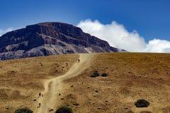 Parque de Teide Nacional Montañas de Tenerife Foto de archivo libre de regalías