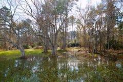 Parque de Tomball Burroughs em Houston Texas Foto de Stock