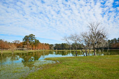 Parque de Tomball Burroughs em Houston Texas Imagem de Stock