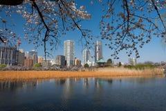 Parque de Ueno foto de archivo