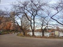Parque de Ueno imagen de archivo