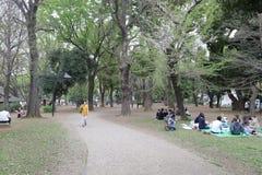 Parque de Ueno en estación de primavera Imagenes de archivo