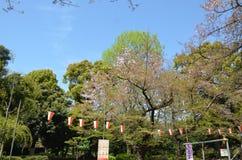 Parque de Ueno Tokio Japón Imagen de archivo