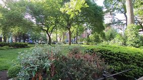 Parque de Union Square en Manhattan #7