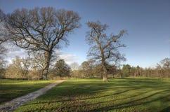Parque de Upton en invierno Fotografía de archivo libre de regalías