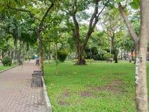 Parque de Vietname com árvores Fotografia de Stock Royalty Free