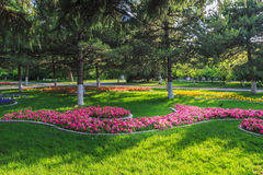 Parque de Zhongshan Imagens de Stock