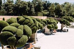 Parque del Buen Retiro en Madrid, España imagen de archivo libre de regalías