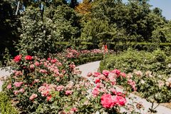 Parque del Buen Retiro in Madrid, Spanje stock afbeelding