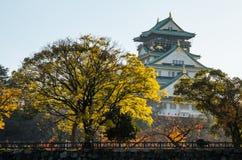 Parque del castillo de Osaka Imagen de archivo