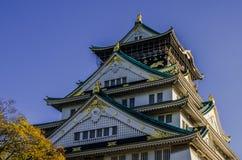 Parque del castillo de Osaka Imágenes de archivo libres de regalías