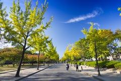 Parque del castillo de Osaka en Kyoto, Japón Imagenes de archivo