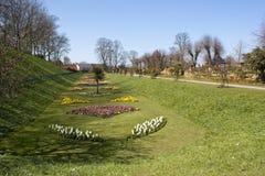 Parque del castillo en Colchester Foto de archivo