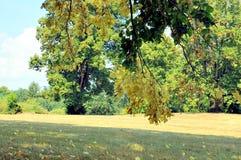 Parque del castillo en Horsovsky Tyn, República Checa fotografía de archivo libre de regalías