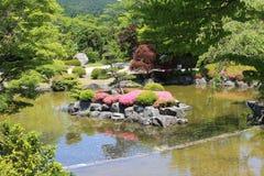 Parque del flor del chery del invierno Foto de archivo libre de regalías