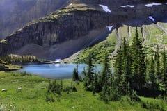 Parque del glaciar Imagen de archivo libre de regalías