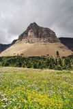 Parque del glaciar de Montana Imagen de archivo libre de regalías