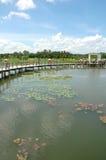 Parque del humedal Fotografía de archivo libre de regalías