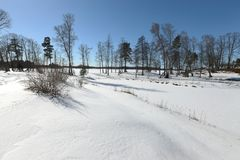 Parque del invierno Fotografía de archivo