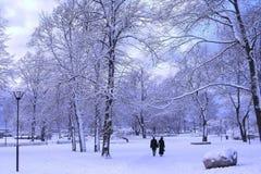 Parque del invierno Fotografía de archivo libre de regalías