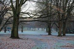 Parque del invierno en Alemania Foto de archivo libre de regalías