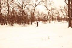 Parque del invierno en Kiev Imagen de archivo libre de regalías
