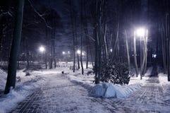 Parque del invierno en la noche. Imagen de archivo