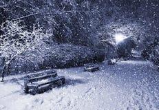 Parque del invierno en la noche Fotografía de archivo libre de regalías