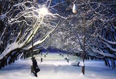 Parque del invierno en la noche Foto de archivo libre de regalías